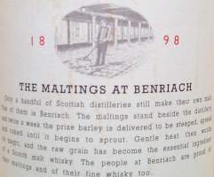 Benriach 10 years old Pure Scotch Highland malt whisky - label back